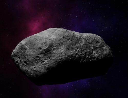 Asteroid Riccardomuti
